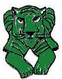 15.Zeleni tigar