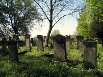 Mennonite Graveyard Heubuden 3
