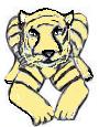 12,Zuti tigar