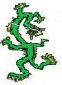 25,Zeleni zmaj