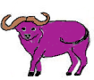 6.Purple OX