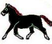 Crni konj