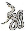Silcer snake