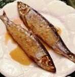 fish_food